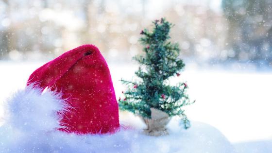 Be a No5 Secret Santa this Christmas